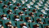 Pau, Frankreich:Diese kuscheligen Zuschauer auf der Tribüne des Hameau-Stadions guckengerade das Rugby-Spielzwischen Section Paloise und Aviron Bayonnais an. Es handelt sich dabei um dasBären-Maskottchen von Pau. So müssen die Spieler in Zeiten von Corona, in denen keine Zuschauererlaubt sind, immerhin nicht vor leeren Rängen spielen.