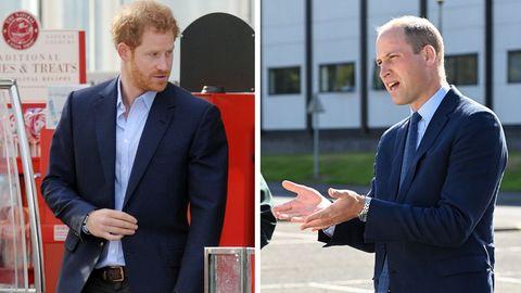 Auf dem Königsweg: In Trauer vereint: Finden die Brüder William und Harry nun wieder zusammen?
