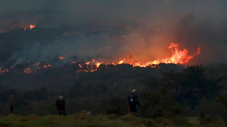 Südafrika, Kapstadt: Ein Feuer wütet an den Hängen vom Tafelberg