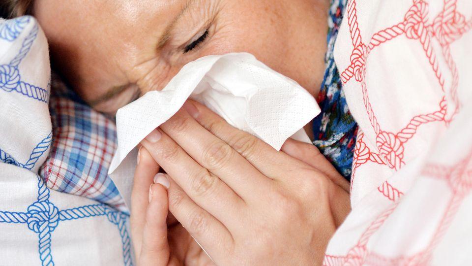 Grippewelle Deutschland