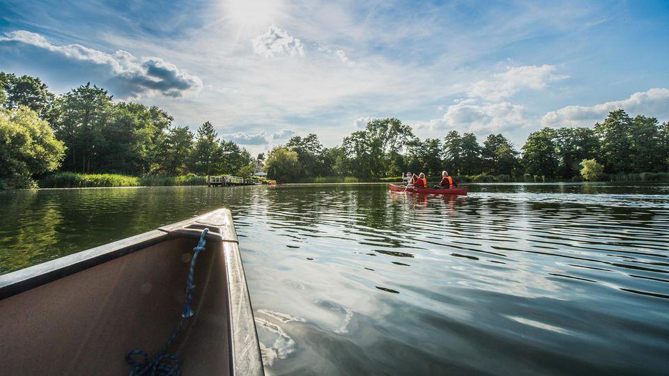 Kellersee: Die Schwentine in Schleswig-Holstein ist für Kanus befahrbar. Bis zur Mündung durchfließt sie Wälder, Sümpfe und Seen