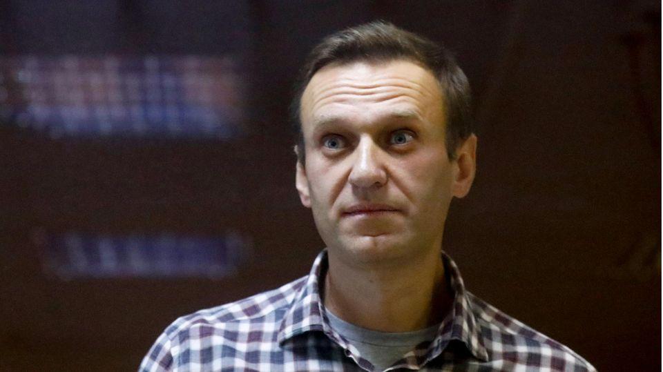 Der russische Oppositionsführer Alexej Nawalny