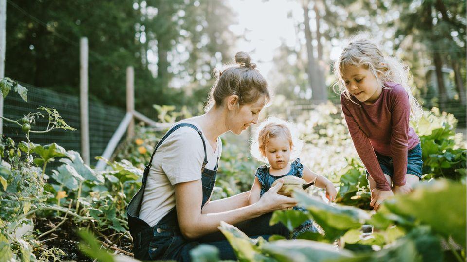 Garten-Trends 2021: Obst und Gemüse anbauen ist nicht nur praktisch, sondern auch lecker.