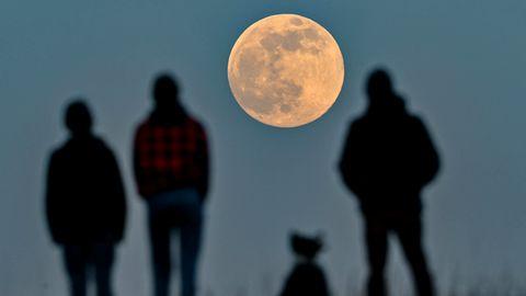 Bild 1 von 10der Fotostrecke zum Klicken: Menschen in Brandenburg stehen auf einem Hügel und beobachten den aufgehenden Mond.