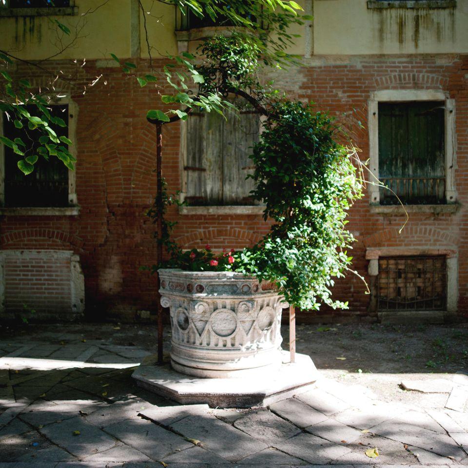 Grüne Oasen  Ungestörte Momente, abseits vom Trubel: In der Lagunenstadt existieren nur wenige Gärten, in die sich die Venezianer zurückziehen können.