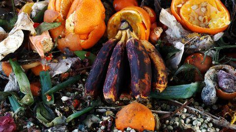 Weggeworfenes Obst und Gemüse auf einer Müllhalde