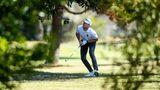Kapstadt, Südafrika. Golfstar Mikael Lindberg aus Schweden sucht zwischen Bäumen den Ball nach seinem zweiten Schlag am fünften Loch auf dem Gelände des Royal Cape Gold Clubs. Dort läuft bereits der dritte Tag der Cape Town Open.