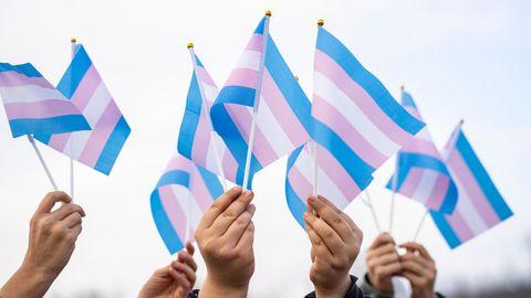 Blau, rosa und weiß sind die Farben der Trans-Pride-Flaggen, die hier in die Höhe gehalten werden