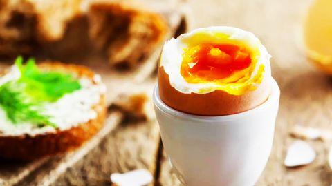 Eier kochen: Ein Frühstücksei in einem Eierbeicher