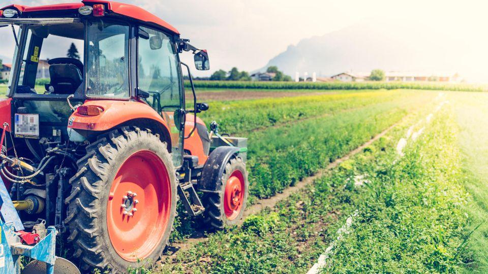 Der belgische Bauer soll von dem Grenzstein genervt gewesen sein, weil er mit seinem Traktor herumfahren musste (Symbolfoto)