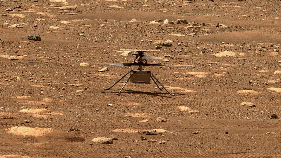 """Das Foto zeigt den Hubschrauber """"Ingenuty"""" am 7. April auf dem Mars"""