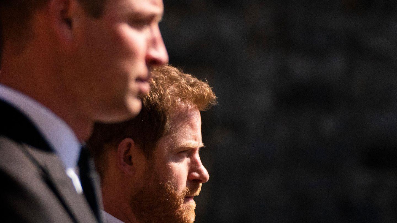 Harry und William: Keine Versöhnung in Sicht?