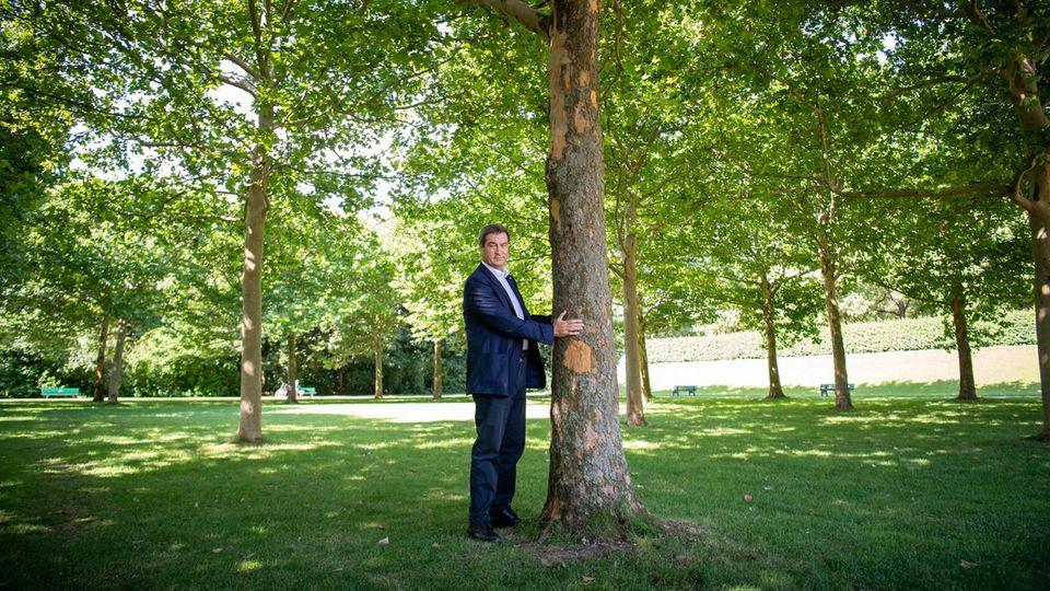 Markus Söder steht neben einem Baum