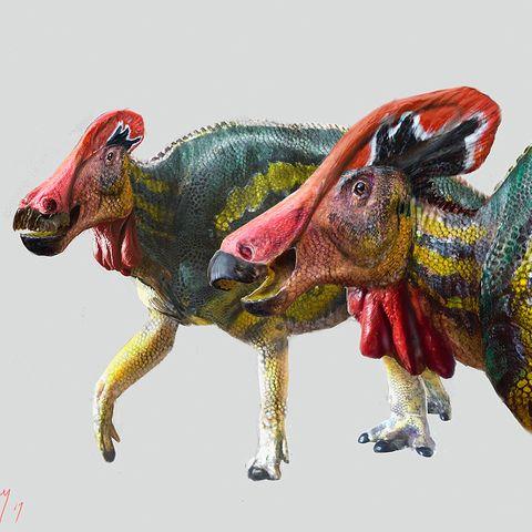 """Mexiko: """"Friedlich und sehr gesprächig"""": Forscher entdecken Schädel von neuer Dinosaurierart"""
