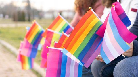Kleine Pride-Flaggen werden in der Hand gehalten. Zu sehen sind die Regenbogenflagge, die Trans- und die Bisexuellen-Flagge.