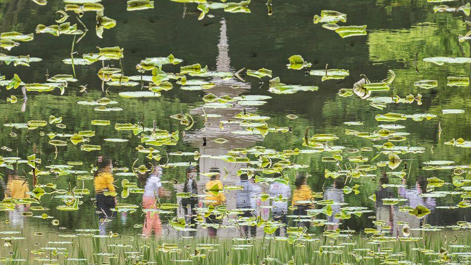Seoul, Südkorea. Es sieht aus wie ein Zerrbild, doch bei genauem Betrachten erkennt man: Es handelt sich um Kinder, die im Kreis um eine Stupa gehen und sich dabei sich in einem See auf dem Gelände des Bongseon-Tempels in Namyangju spiegeln.
