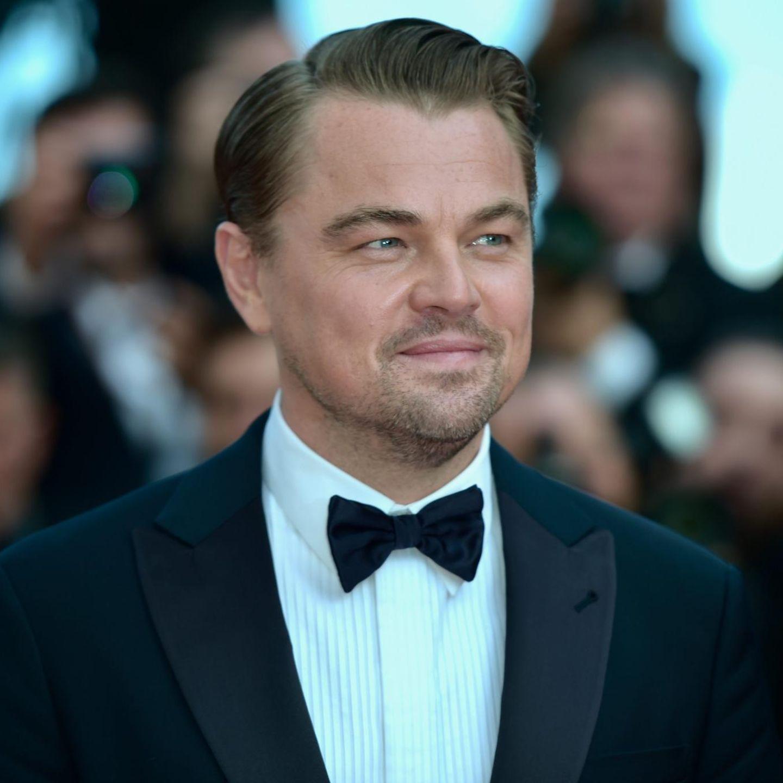 Organisation um Leonardo DiCaprio stellt 20 Millionen Dollar für ...