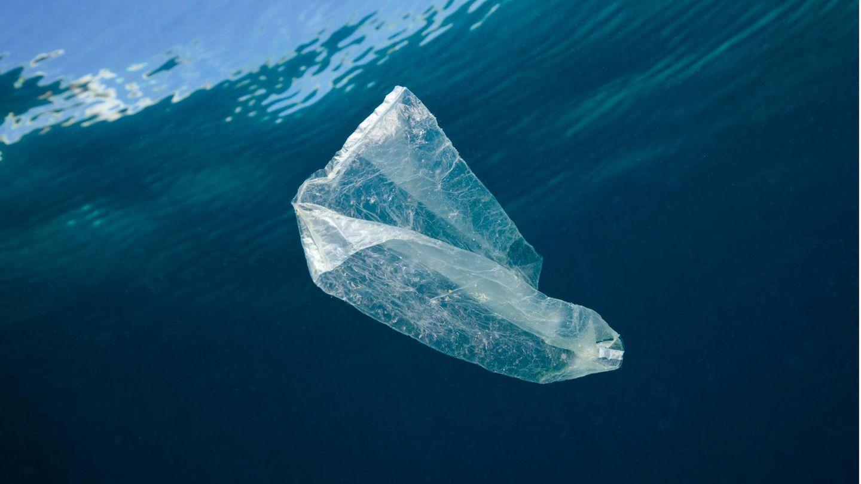 Eine Plastiktüte schwimmt im Meer