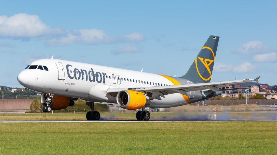 Mit dem neuen Investor Attestor soll die Airline endlich in eine finanziell sichere Zukunft fliegen.