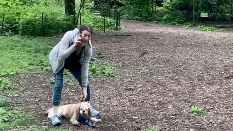 Eine junge Frau telefoniert im Central Park und hält einen sitzenden Hund am Halsband