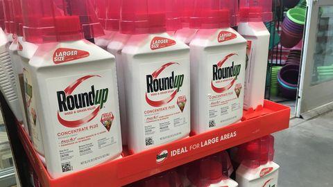 Behälter mit Roundup, ein glyphosathaltiges Unkrautvernichtungsmittel von Monsanto