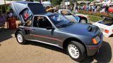 Peugeot 205 turbo 16 (118)