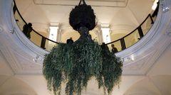 Ein Olivenbaum hängt kopfüber von der Decke im Martin-Gropius-Bau in Berlin.Die Skulptur entstand anlässlich der Dani-Karavan-Ausstellung 2008.