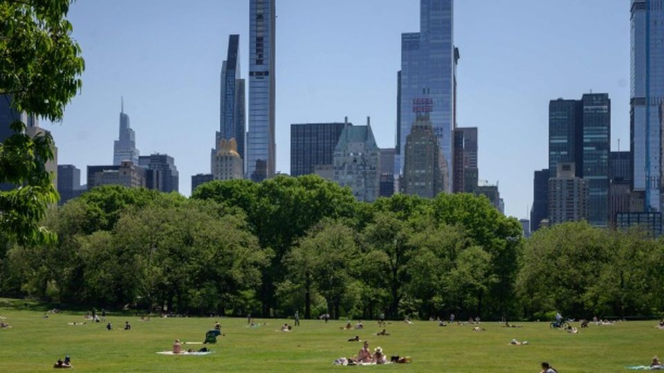 Central Park mit Manhattan Skyline