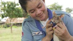Kambodscha: Landminen-Spürrate Magawa