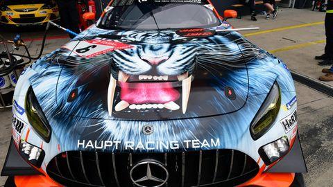 Ein Kunstwerk auf der Motorhaube des Mercedes-AMG GT3 vom Racingteam Haupt.