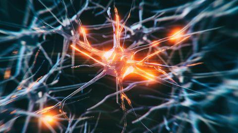 Alzheimer Medikament Aducanumab: Nervenzellen als 3D-Grafik
