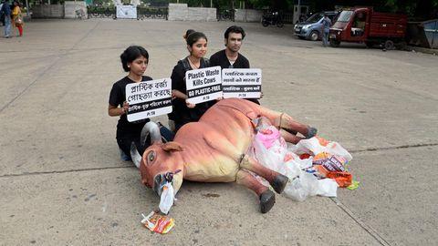 PETA-Demonstranten sitzen hinter der Figur einer Kuh und halten Plakate hoch