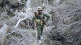 Goma, Kongo.Ein Ranger des Virunga-Nationalparks steigt durch aschebedecktes Gelände auf den Nyiragongo-Vulkan. Drei Wochen nach dem Ausbruch des Nyiragongowollen Wissenschaftler des Goma Volcanological Observatory auf demGipfel des Kraters die vulkanische Aktivität beurteilen. Bei der Eruption waren etwa30 Menschen gestorben,fast einehalben Million Bewohner der Region mussten evakuiert werden.