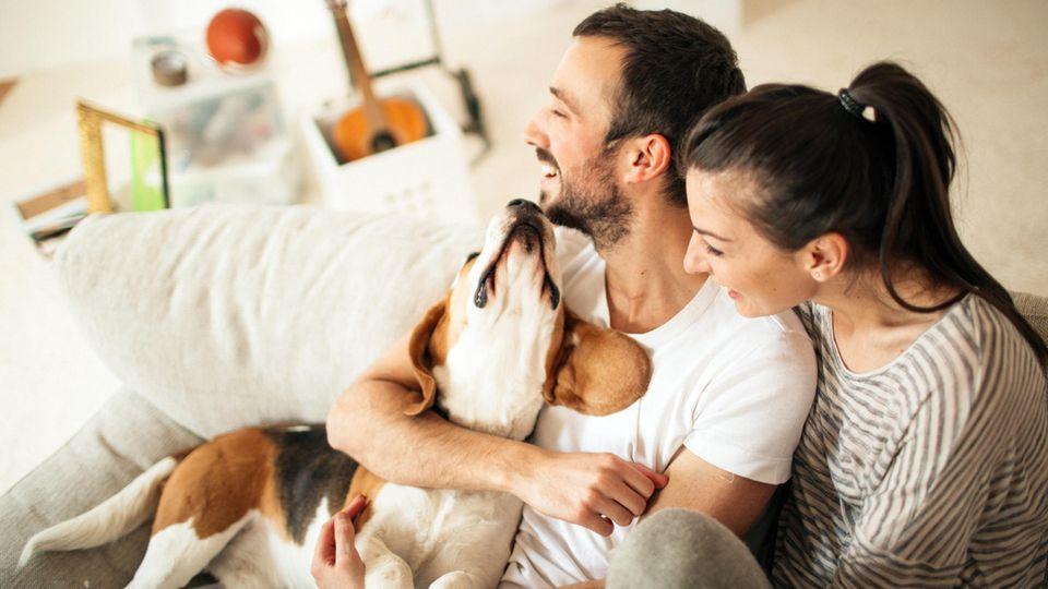 Paar sitzt auf dem Sofa und spielt mit einem Hund