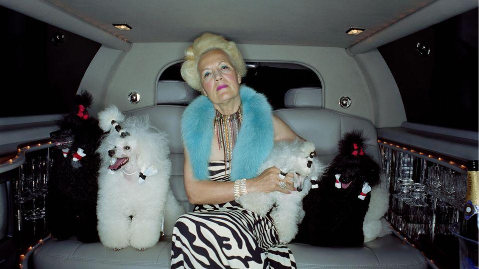 Eine reiche Frau sitzt mit ihren Pudeln auf dem Rücksitz einer Stretch-Limousine
