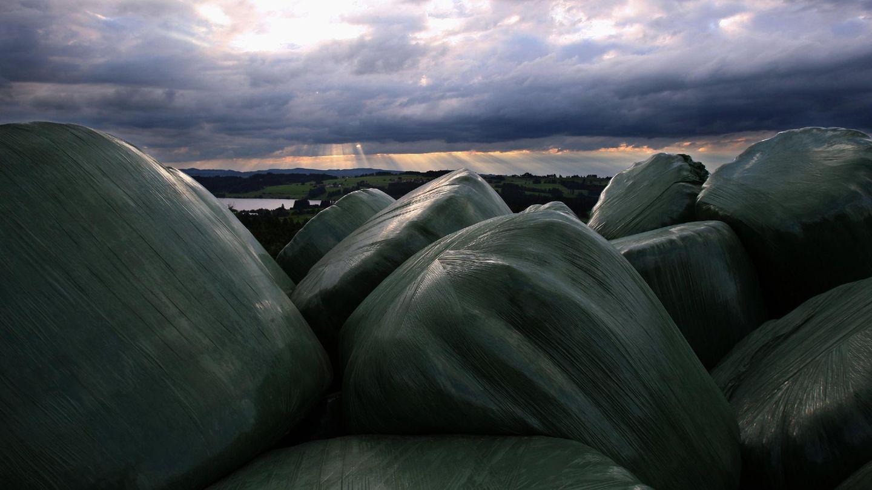 Heuballen liegen eingepackt auf einem Feld in Deutschland.