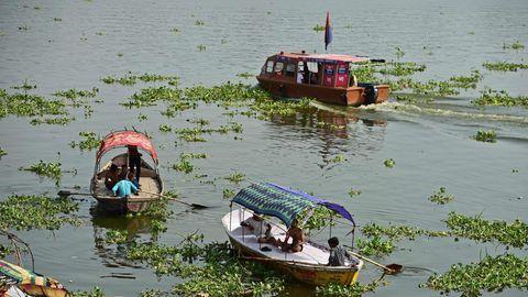 Zwischen Teppichen von Wasserpflanzen fahren drei Motorboote mit Sonnensegeln über einen breiten Fluss