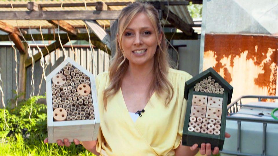 Mit Insektenhotels Bienen retten