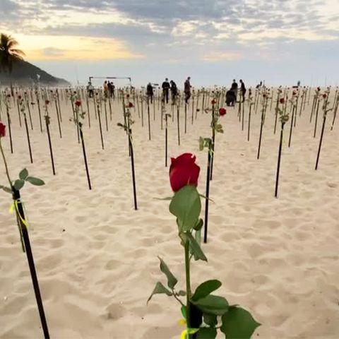 Copacabana: Erschreckendes Mahnmal: Jede dieser Rosen steht für 1000 Corona-Tote