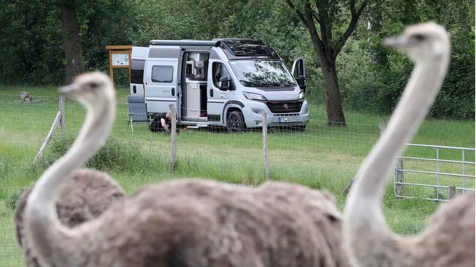 Immer mehr Caravan-Besitzer Angebote von Bauerhöfen, Weingütern oder Tierfarmen, um dort kurz Halt zu machen