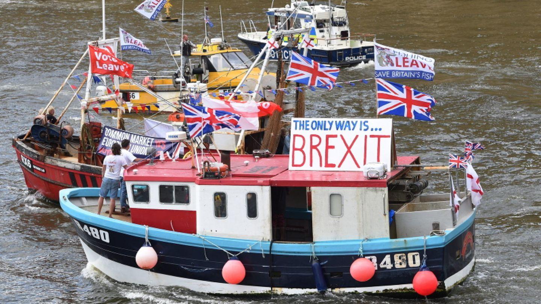 Boote werben für Brexit