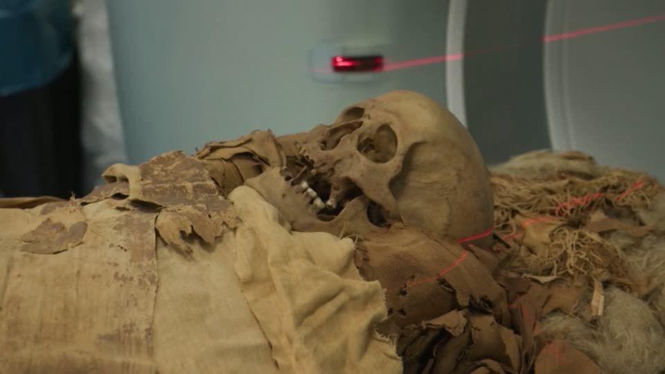 Mumienfund