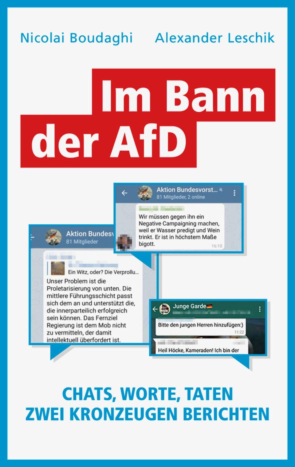 """Nicolai Boudaghi / Alexander Leschik: """"Im Bann der AfD. Chats, Worte, Taten"""". Europa Verlag, 232 Seiten, 18 Euro."""