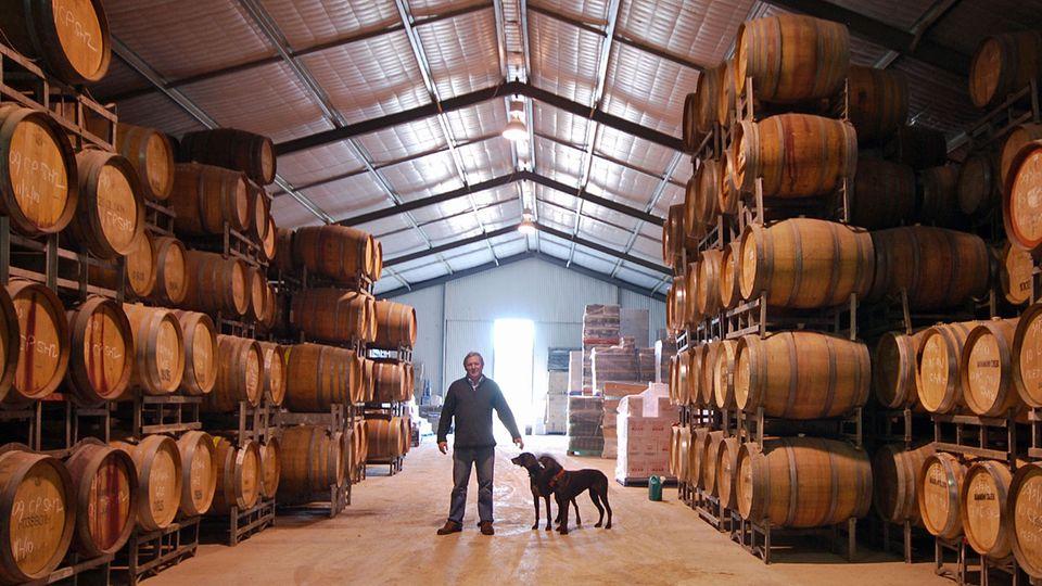 Neben seinem in die Felsen getriebenen Weinkeller altert der vergorene Traubensaft bei Maxwell Wines auch im temperierten Wellblechhangar, wie es bei den meisten australischen Weingütern üblich ist - seine Jagdhunde begleiten ihn stets auf dem Rundgang