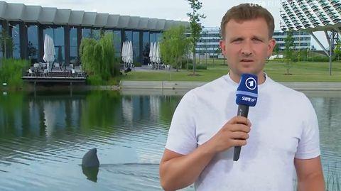 Haialarm im Campo Bavaria: Reporter Lennert Brinkhoff und die Haifischflosse