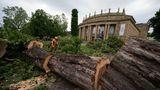 Ein Mitarbeiter einer Baumpflegefirma zersägt vor dem Opernhaus der Staatsoper am Eckensee einen umgestürzten Baum