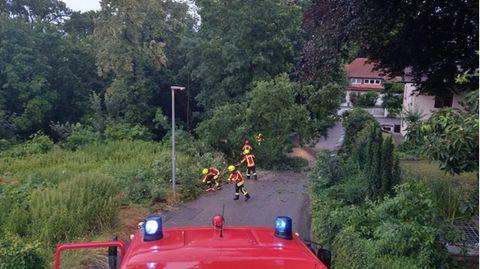 Diese Bild von Aufräumarbeitenpostete die Freiwillige Feuerwehr Landshut auf ihrer Facebook-Seite