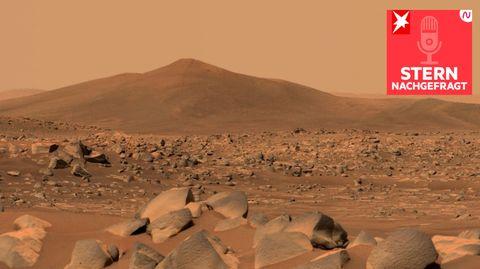 Aufnahme des Mars-Rover der NASA