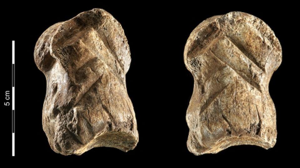 Verzierungen auf 51.000 Jahre alten Knochen in Niedersachsen entdeckt.