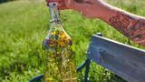 Eine Flasche Essig mit Kräutern